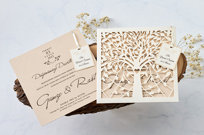 Wedding Invition Cards.Luxury Wedding Invitation Card 1167